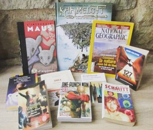 Bilan de lecture du mois de janvier 2016 - les plumes baroques blog