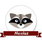 raccoon-nico